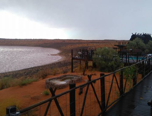 First rains of the season – 27 December 2016