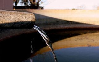 Xaus lodge kgalagadi limited water