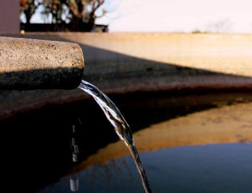 Living with, and loving desert water